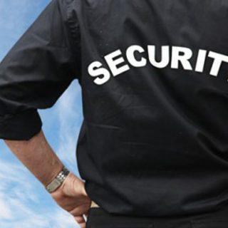 Στελέχη Υπηρεσιών Ασφαλείας